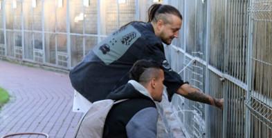 Bezdomnymi zwierzętami z Sochaczewa zajmie się nowe schronisko-55113