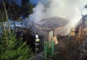 Pożar altanki na ogródkach działkowych-56214