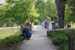 Żelazowa Wola zaprasza: Klub Przyrodnika dla małych, spacer przyrodniczy dla dużych-59714