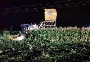 Tragedia w Guzowie. Zginął 22-letni kombajnista-59822