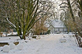 Zima w Żelazowej Woli 2021-9947