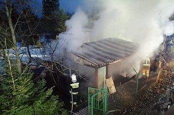 Pożar altanki na ogródkach działkowych-9961