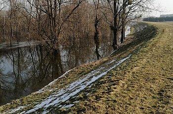 Kontrola wałów i bobrów w powiecie-10063