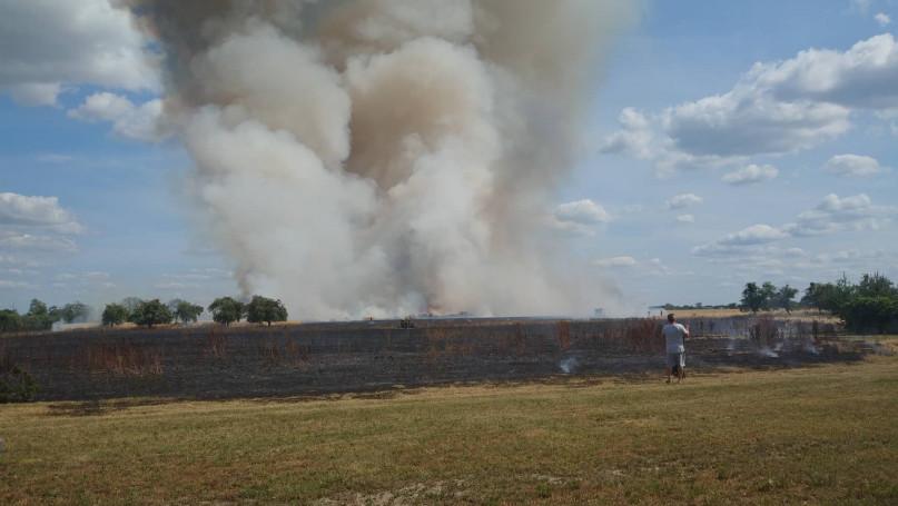 Pożar zboża w Rokotowie