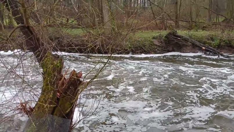 Rzeka Utrata zanieczyszczona 15.04.2021